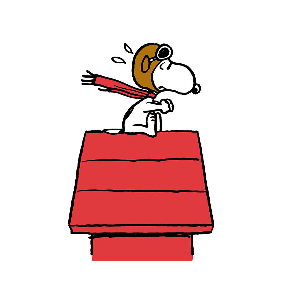Black and white dog wearing a red scarf and pilot helmet on top of a red doghouse