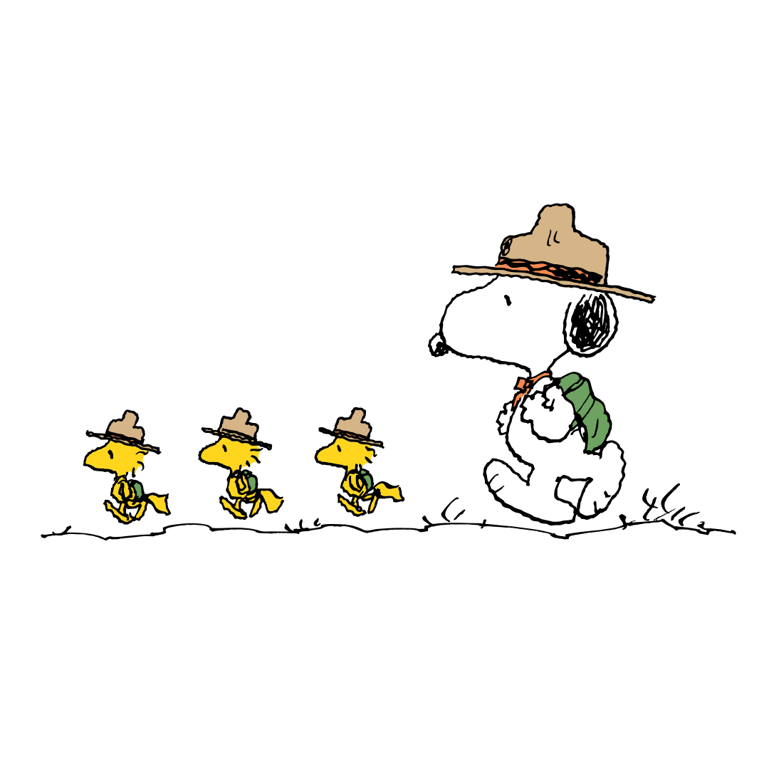 Three little yellow birds walking with a black and white dog. All are wearing camper hats