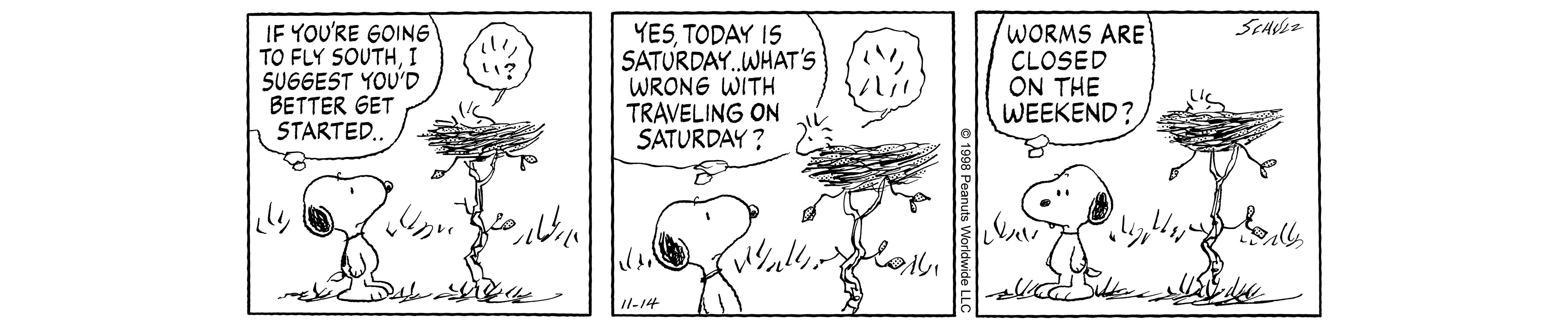 A comic strip of a dog and a little bird in a bird's nest.